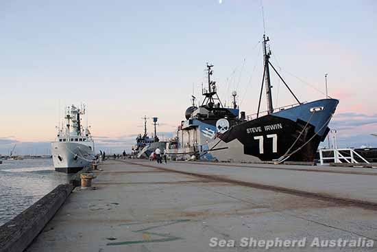 POWERSTAR FOOD FUER SEA SHEPHERD AUSTRALIA